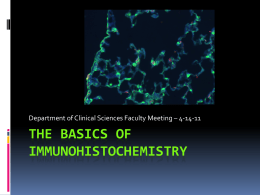 The basics of immunohistochemistry
