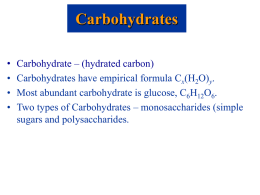 Carbohydrates B3