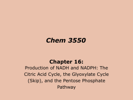 Concepts in Biochemistry 3/e