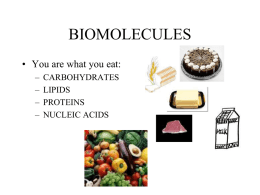 carbs and lipids