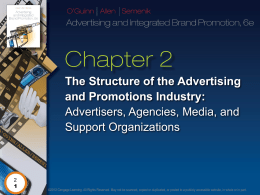 The Structure of the Advertising and Promotions Industry