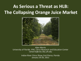 As Serious a Threat as HLB: The Collapsing Orange Juice Market