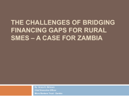 The Challenges of Bridging Financing Gaps for Rural SMEs