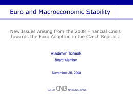 Euro and Macroeconomic Stability
