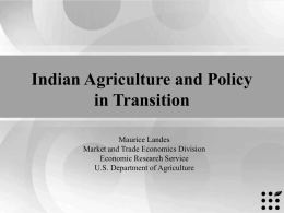 India's Oilseed Sector: Implications of Policy and