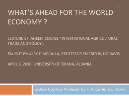What's Ahead for the World economy ? Lecture 17: AHEED