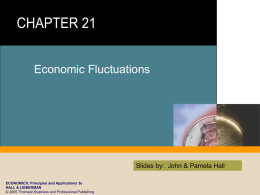 Chapter 21 - Economic Fluctuations