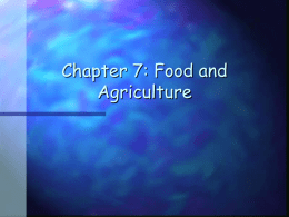 Chapter 7: Food and Agriculture