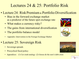 foreign exchange risk and diversification