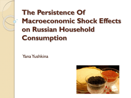 The persistence of macroeconomic shock effects on Russian