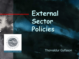 Lecture 3: External Sector Policies
