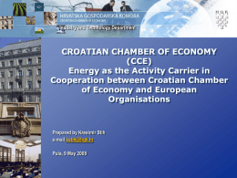 Energy as the Activity Carrier in Cooperation between Croatian