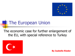 Ch 19 The economic case for further enlargement of the EU, with