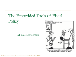 Embedded Tools of Fiscal Policy
