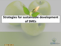 Strategies for sustainable development of SMEs