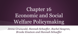 Chapter 16 Economic and Social Welfare