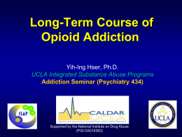Long-Term Course of Opioid Addiction