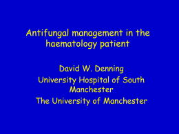 Antifungal management in the haematology patient