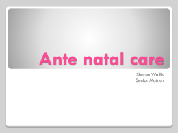 Ante natal care - Derby GP Specialty Training Programme