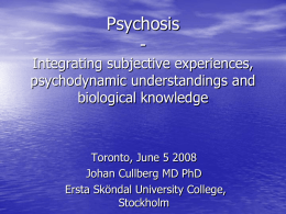 Psychosis - Integrating subjective experiences