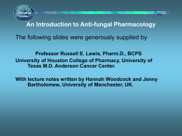 What are the targets for antifungal therapy?