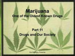 MARIJUANA One of the world`s oldest known drugs