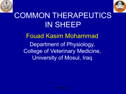 common therapeutics in sheep - College of Veterinary Medicine
