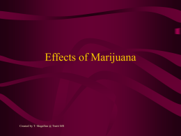 Effects of Marijuana - INSIDE CFISD.NET Home Page