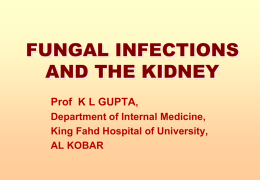 fungal infections and the kidney - Department of Internal Medicine