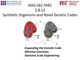 Synthetic Organisms and Novel Genetic Codes