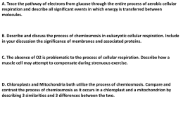 Describe and discuss the process of chemiosmosis in eukaryotic