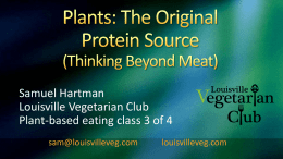 Plants: The Original Protein Source (Thinking Beyond Meat)