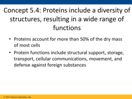 protein review 2 - Ms. Hart WHS Science