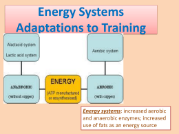 Energy systems adaptations to long term training