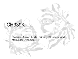 Lecture Slides for Amino Acids, Proteins, and