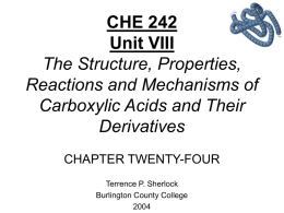 Chapter 24 Amino Acids, Peptides, and Proteins