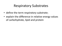 A2 4.1.1 Respiratory Substrates
