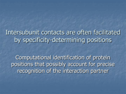 Intersubunit contacts are often facilitated by specificity