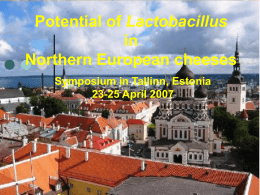 Potential of Lactobacillus in Northern European cheeses