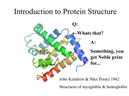 Introduction to Structure Biology