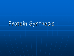 Protein Synthesis - East Aurora Schools