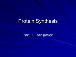 Protein Synthesis - Simon Technology