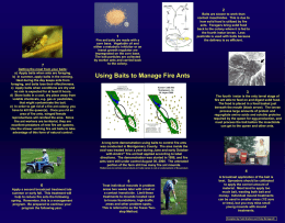 Fire Ant Management - Auburn University College of Agriculture