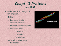 Chapt. 3-Proteins - University of New England