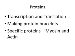Proteins - Wesleyan College Faculty
