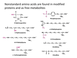 Amino acids have many roles in living organisms