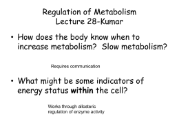 Regulation of Metabolism - New Jersey Medical School