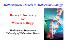 Mathematical Models in Molecular Biology
