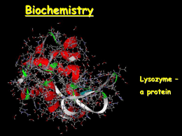Biochemistry: The Chemistry of Life