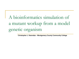 A bioinformatics simulation of a mutant workup from a